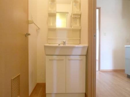 アムール A/B A103号室の洗面所