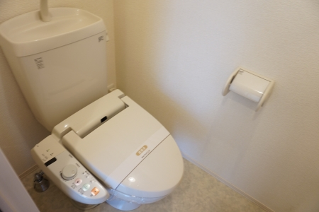 メゾン ヴェール 101号室のトイレ