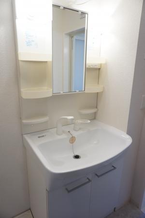 メゾン ヴェール 101号室の洗面所