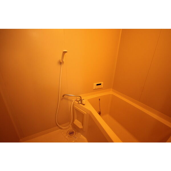 DUPLEX 国王258Aの風呂