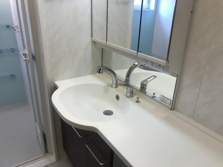 ベルエア岐阜 103号室の洗面所
