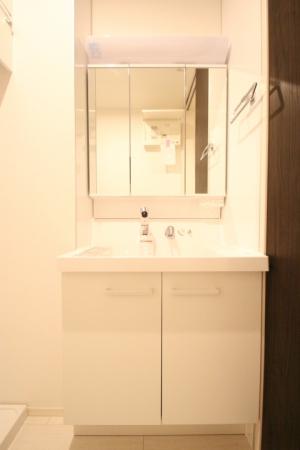 D-room地行 103号室の洗面所
