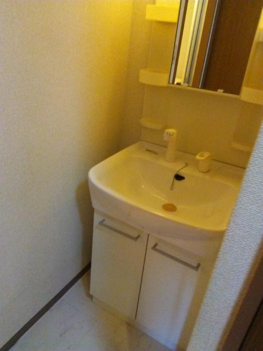 フローレンスMORITA 201号室の洗面所