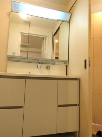 アクアライブラ 306号室の洗面所