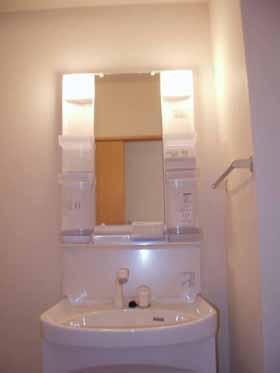 エーデルハイム ASAKAーB 105号室の洗面所
