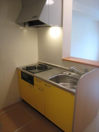 リビングタウン森岡 A 101号室のキッチン