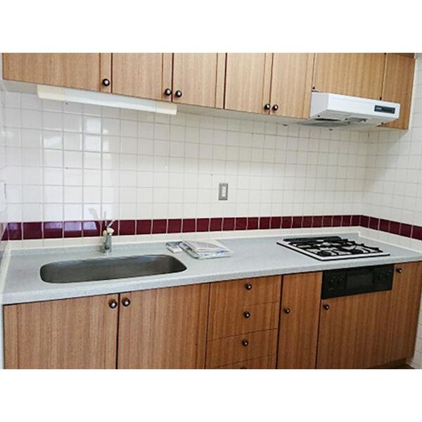 ヒルトップ東山 102号室のキッチン
