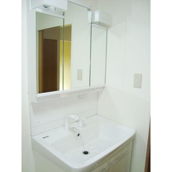 ヒルトップ東山 102号室の洗面所