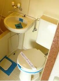 メゾン・ド・ペルシュ 0407号室のトイレ