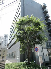 アルファコンフォート横浜 506号室の外観