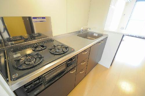 レオネクストメール西門 204号室のキッチン