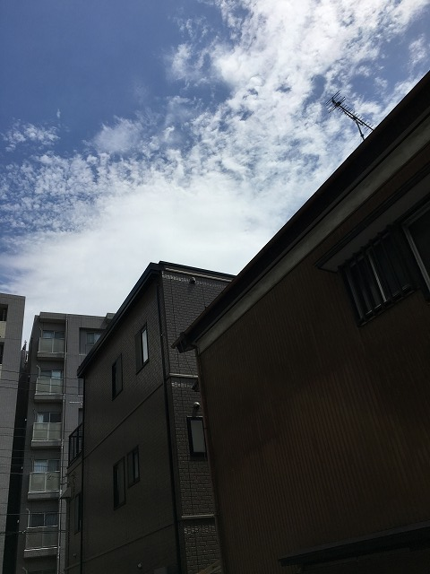 神明富士美マンション 103号室の景色