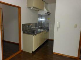 中津中村ビル 203号室のキッチン