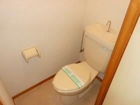 中津中村ビル 203号室のトイレ