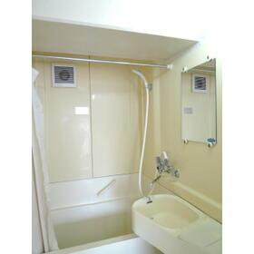 メゾン・ド・プラティーヌ 202号室の風呂
