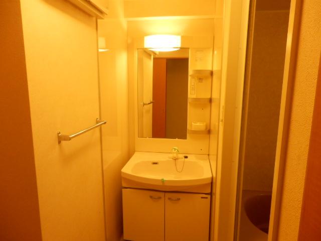 ベルシャイン厚木 102号室の洗面所
