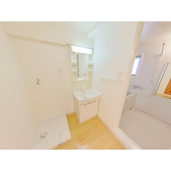 第3ヒルハイツ桃山 105号室の洗面所