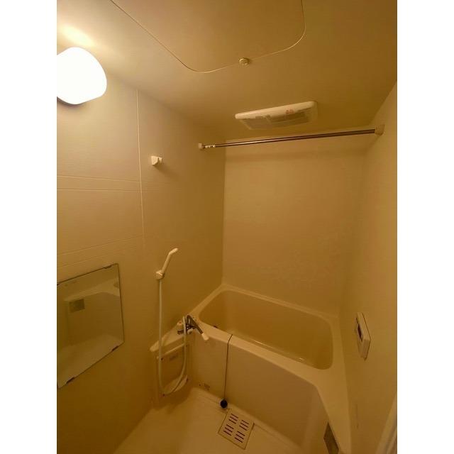 アムール シュシュ 105号室の風呂