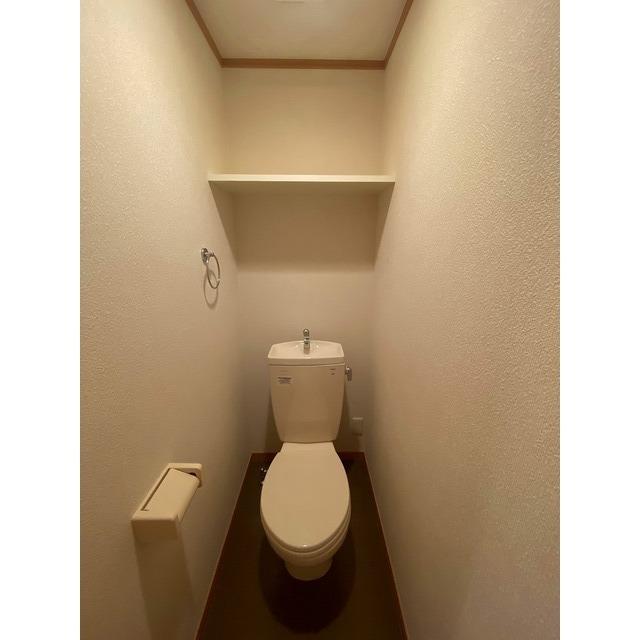 アムール シュシュ 105号室のトイレ