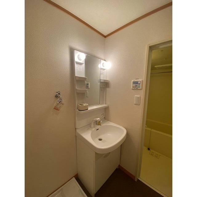 アムール シュシュ 105号室の洗面所