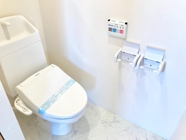 VictoireⅠ(ヴィクトワールワン) 201号室のトイレ