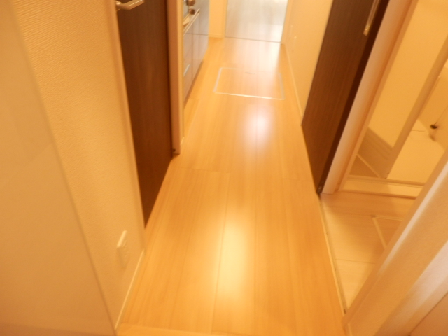 エスタシア光 00205号室の玄関