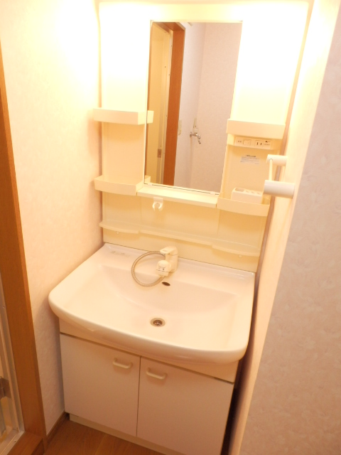 グローバル錦Ⅱ 305号室の洗面所