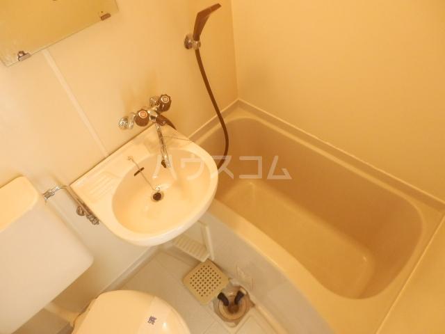 プラザ・ドゥ・ベルタ 203号室の洗面所