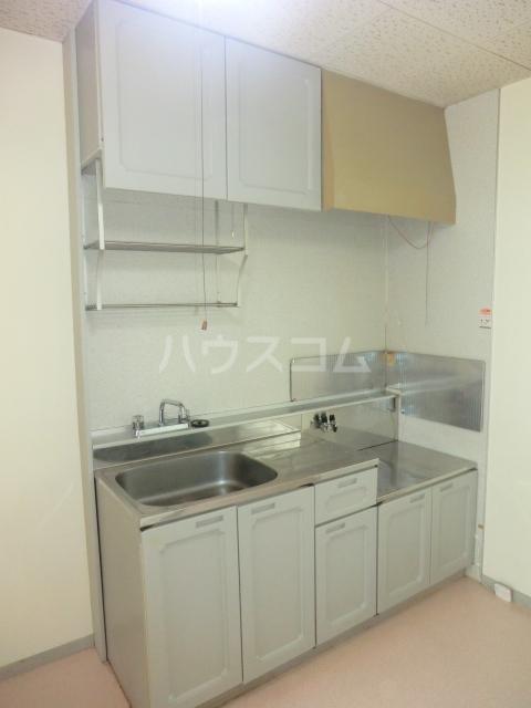 ハティセナン 101号室のキッチン