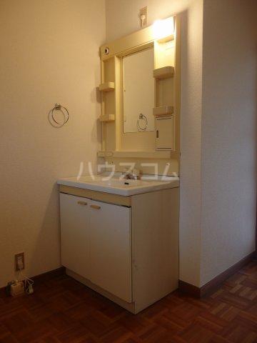 トゥリルハイツ 205号室の洗面所