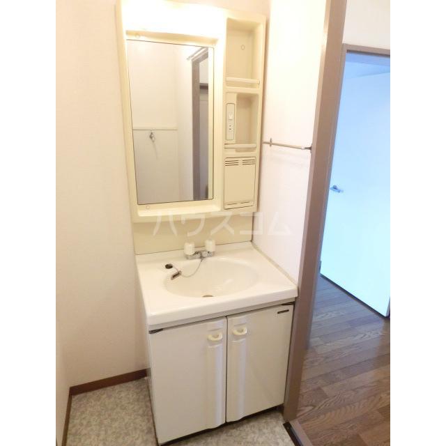 サウスフラット 103号室の洗面所