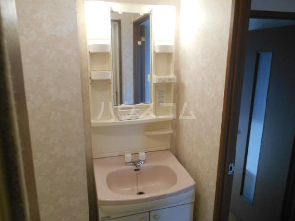 グレースハイツ岩崎 1FD号室の洗面所