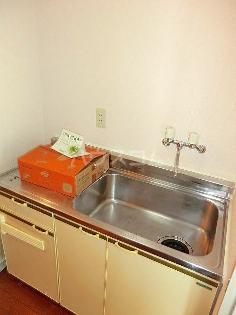 ファインアート上流 205号室の洗面所