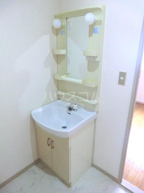 コーポ富丘 202号室の洗面所
