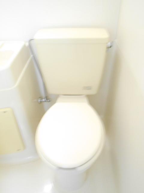 スカイハイム伊藤 102号室のトイレ