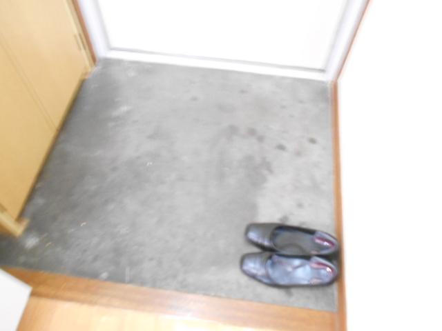 スカイハイム伊藤 203号室の玄関