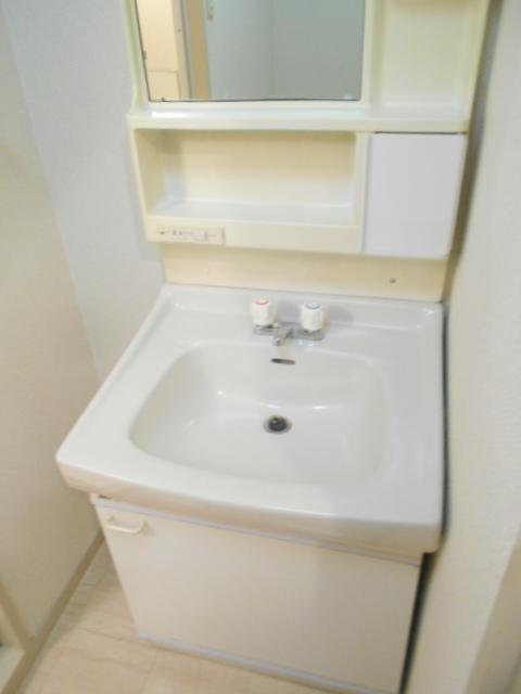 シャトルブラウンB 303号室の洗面所