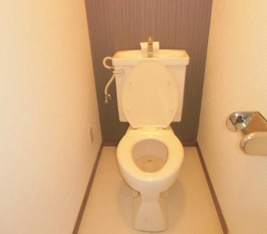 グレース犬山Ⅱ 303号室のトイレ