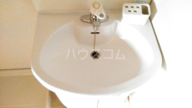 ドルフ 302号室の洗面所