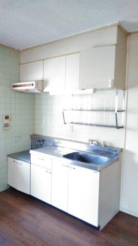レヂデンス上条 101号室のキッチン