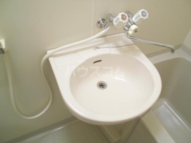 キャッスルハウス 102号室の洗面所
