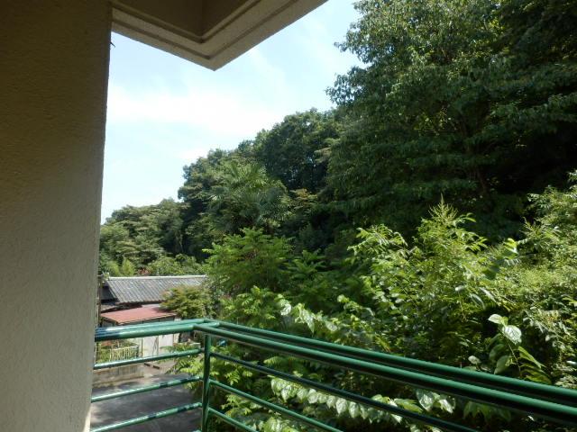 グリーンハイツ 301号室の景色