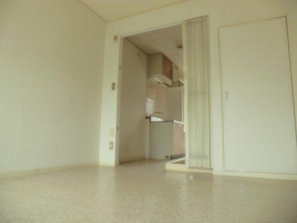 コリーナヴェルデ 101号室のリビング