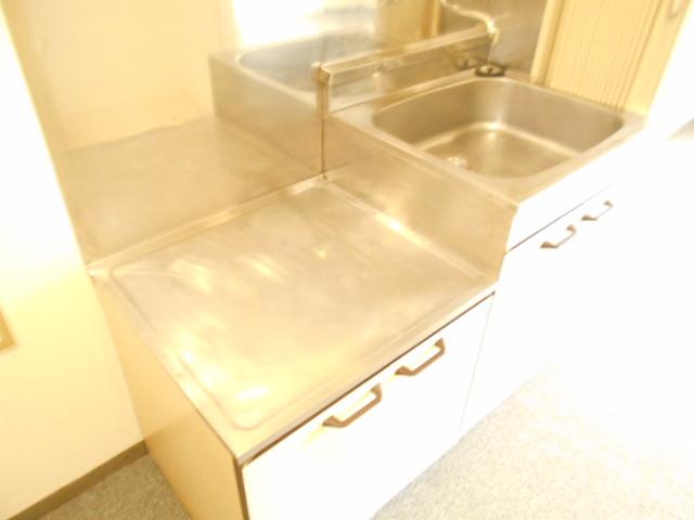 フラワーハイム 222号室のキッチン
