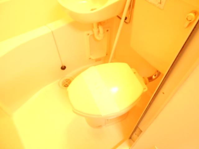 フラワーハイム 222号室のトイレ