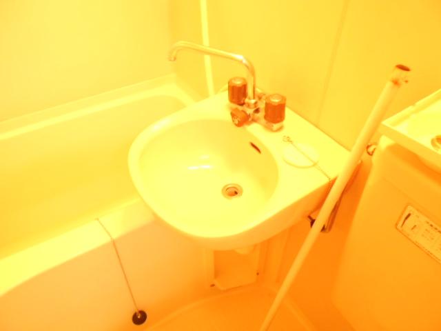 フラワーハイム 222号室の洗面所