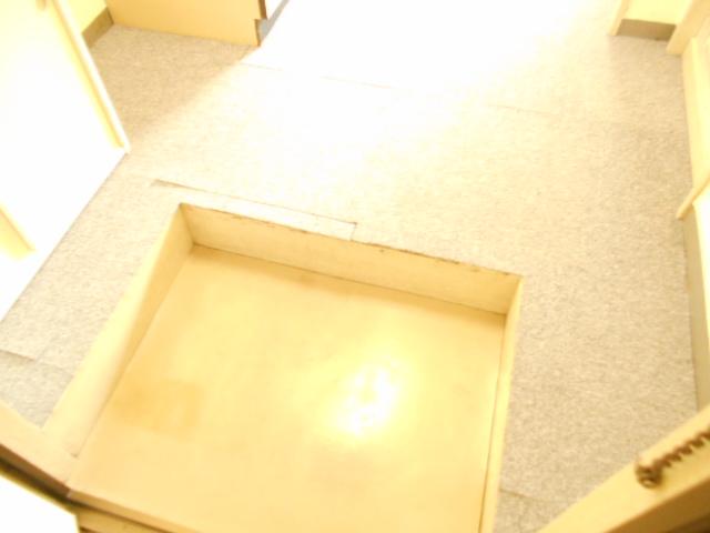 フラワーハイム 222号室の玄関