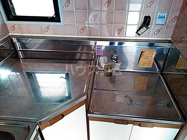 ネクストライフ白沢 201号室のキッチン