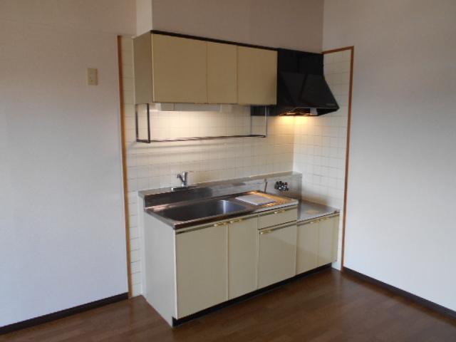 グリーンシティ岩倉 301号室のキッチン