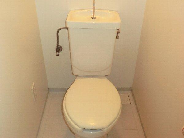 グレイスコート 305号室のトイレ